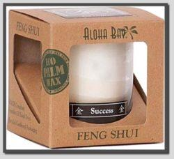 Feng Shui Success Cancle