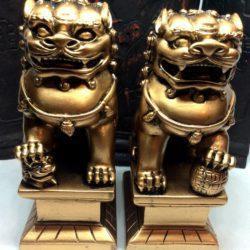 Golden Fu Temple Dogs