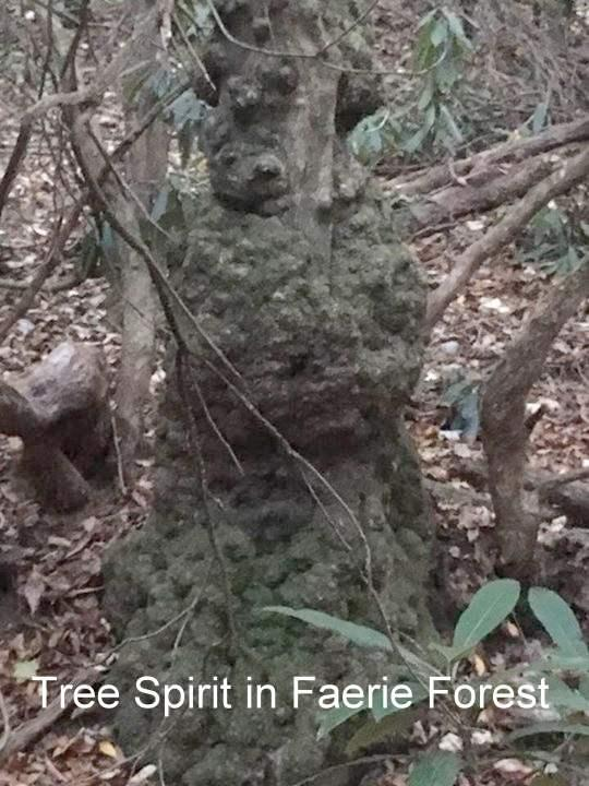 Forest tree person
