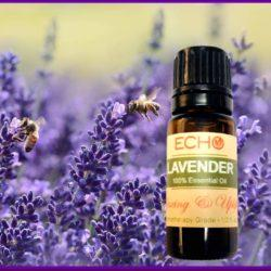 Echo Lavendar Essential Oil at Mountain Valley Center