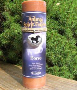 Animal Spirit Horse