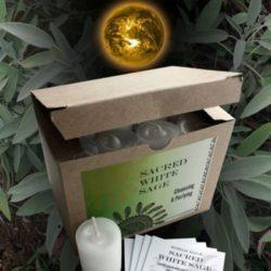 White Sage Votive Candle