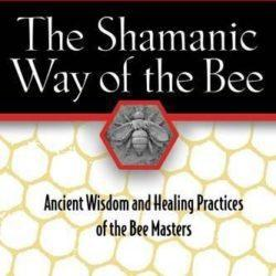 Shamanic way of the bee book