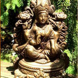 Shiva at MVC