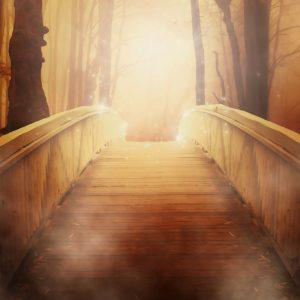 wood bridge into the light
