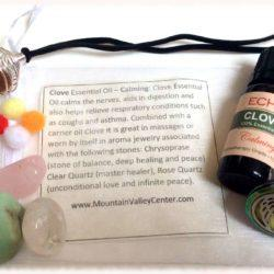 Clove Aromatherapy Kit at MVC