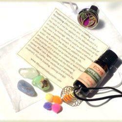 Peppermint Aromatherapy Kit at MVC